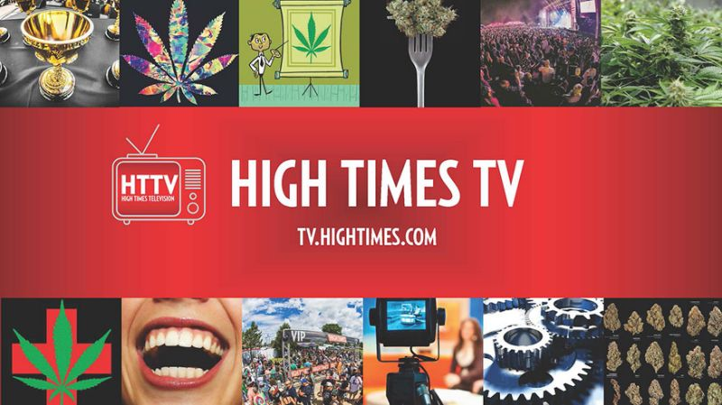 High Times to Launch High Times TV