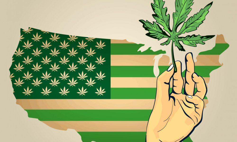 Washington Offer Promise for Hemp and Cannabis Market