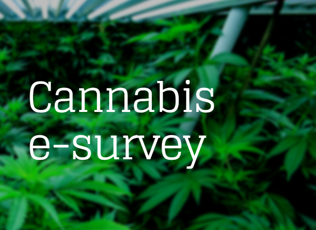 Flower, Vape or Edible? Survey Offers a Glimpse of What California Cannabis Users Prefer