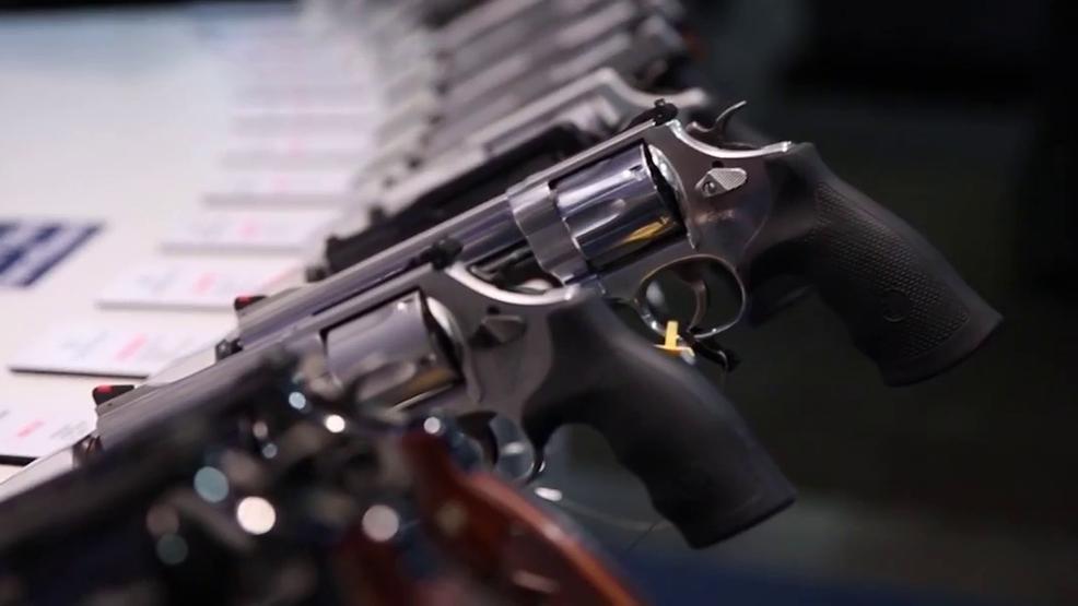 Atlanta Area Organizations Call for Gun Legislation