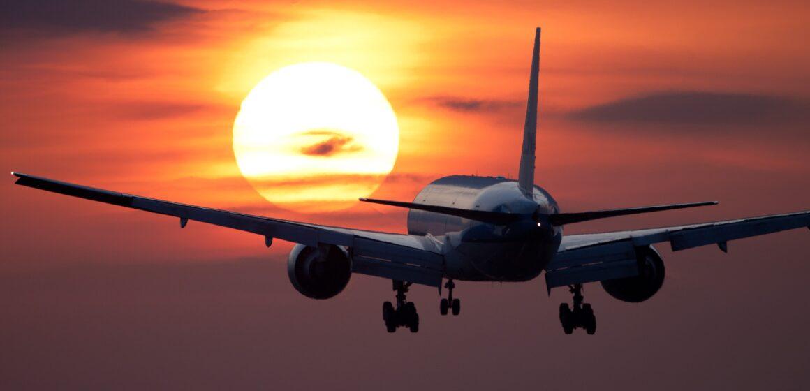 Aleah Pilgrim: Taking Off With Delta 8